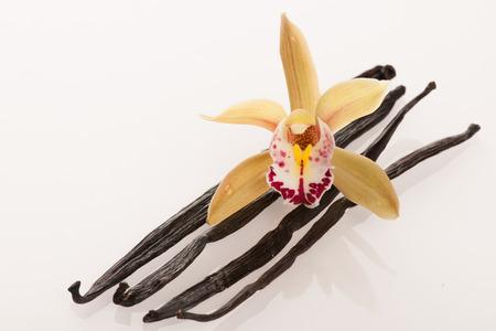 Vanillestokjes en orchidee bloemen geïsoleerd op een witte achtergrond