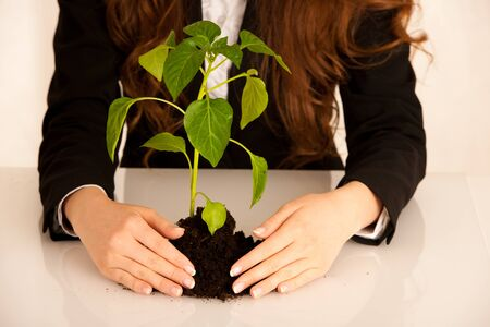 attractive business woman with seedling, growth and prosperity conceptual photo