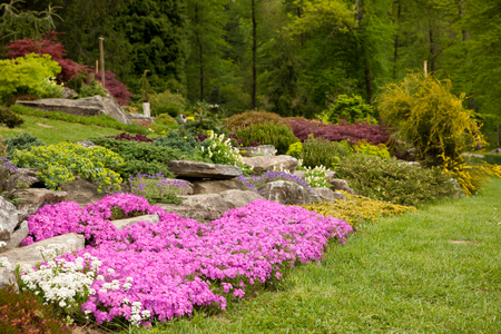 Flowering rock garden in spring. Different bushes and flowers blooming over rock formations in park Archivio Fotografico - 101353194