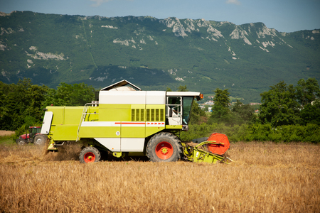 combine harvesting grain  on a hot summer afternoon - agriculture . Stock Photo