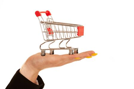 Young business woman holds a shopping cart in her hand isolated over white 版權商用圖片