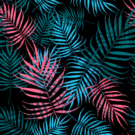 Palm tree foliage on black background