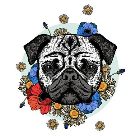 Graphically cute pug dog on white background Çizim