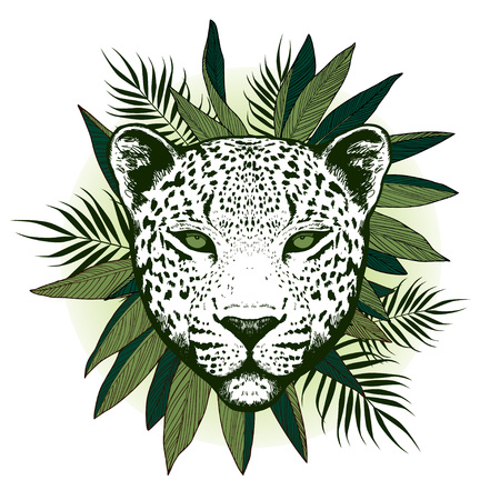 panthera: Graphical leopard  with palm leaves - vector illustration