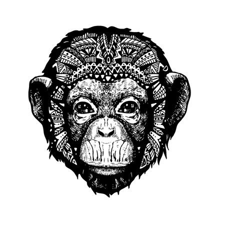 Monkey Head doodle style on white background - vector illistration