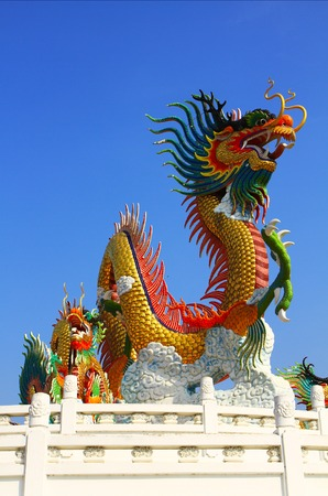 chinese dragon photo