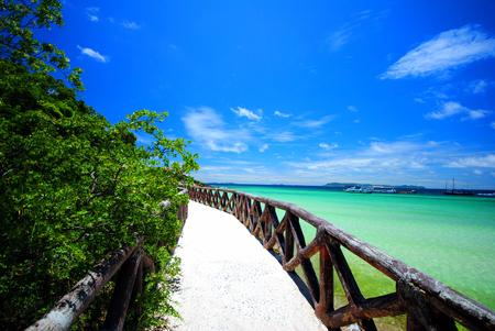 bridge on beach and blue sky in sunny day