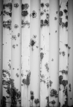 old container: Background and texture of the old container and rust with black and white color