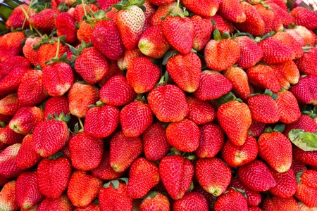 Fresh strawbery in the market photo
