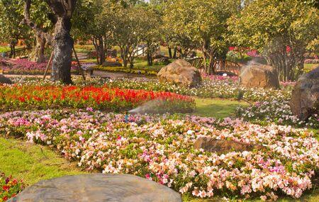 flower garden with sprinkler spraying water Stock Photo