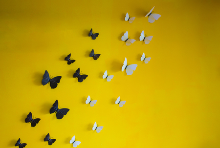 Hand made butterfly decorate on yellow wall