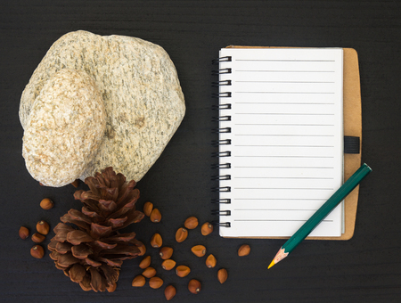 top view image of open blank notebook on black wooden table and nature decoration Standard-Bild