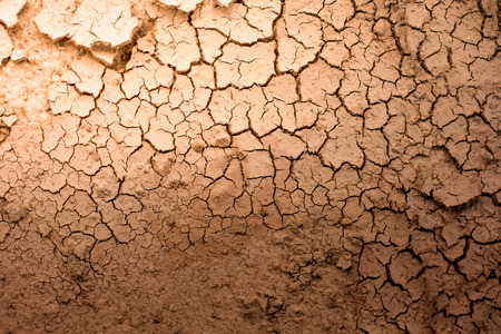 Crack of dry soil texture background with sun light Standard-Bild