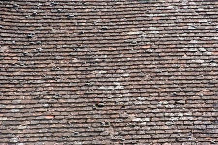 Old roof with moss photo