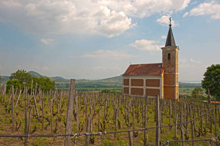 Small chapell at the wineyard Stock Photo - 12633292