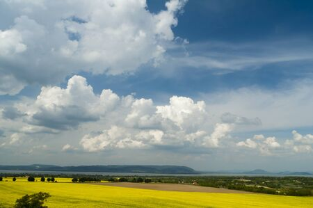 Landscape with blossoming colza and sky with blue cloouds Stock Photo - 16529423