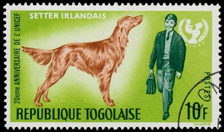 unicef: TOGO - CIRCA 1967: Un timbro stampato dalla Togo, mostra il 20 � anniversario dell'UNICEF e Setter Irlandese, circa 1967