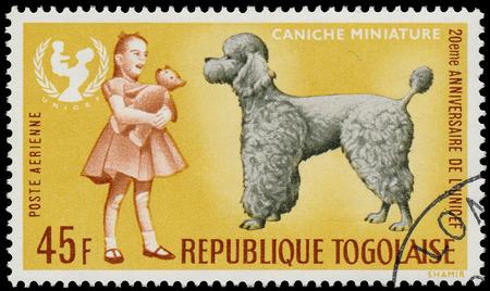 unicef: TOGO - CIRCA 1967: Un timbro stampato dalla Togo, mostra il 20 � anniversario dell'UNICEF e miniatura cane Caniche, circa 1967