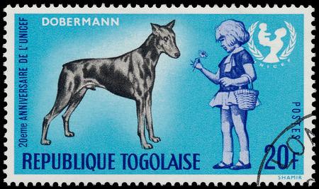 unicef: TOGO - CIRCA 1967: Un timbro stampato dalla Togo, mostra il 20 � anniversario dell'UNICEF e cane dobermann, circa 1967