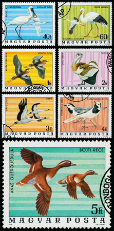 circa: HUNGARY - CIRCA 1976: A stamp printed in Hungary shows Common spoonbill - Platalea Leucorodia, series Birds, circa 1976