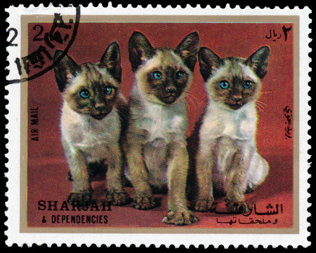 SHARJAH AND DEPENDENCIES, UAE - CIRCA 1972: Stamps printed in Sharjah and Dependencies (United Arab Emirates) shows Siamese kittens, circa 1972