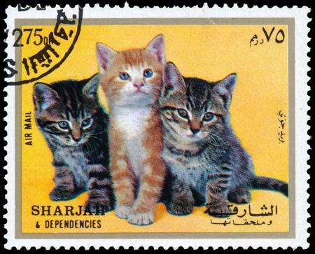 sharjah: Stamps printed in Sharjah kitten Shows