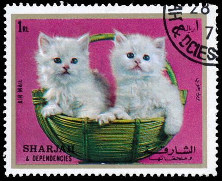 Dependencies AND SHARJAH, UAE - CIRCA 1972: Stamps printed in Sharjah and Dependencies United Arab Emirates Shows kittens, circa 1972 報道画像