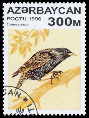 circa: AZERBAIJAN - CIRCA 1996: a stamp printed in Azerbaijan shows Sturnus vulgaris