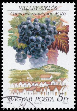 cabernet: HUNGARY - CIRCA 1990: a stamp printed in Hungary shows Cabernet franc grapes and landscape of Villany-Siklos Editorial