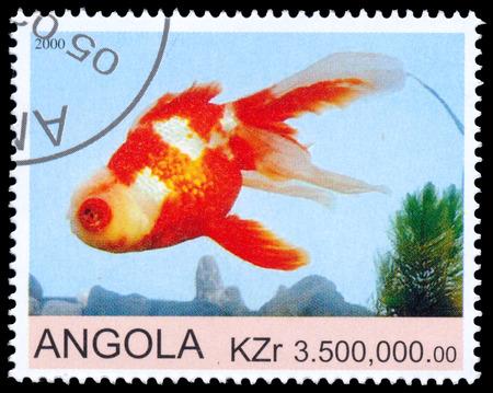 printed: ANGOLA - CIRCA 2000: a stamp printed by Angola shows Goldfish