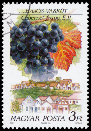 cabernet: HUNGARY - CIRCA 1990: a stamp printed in Hungary shows Cabernet franc grapes and landscape of Hajos-Vaskut Editorial