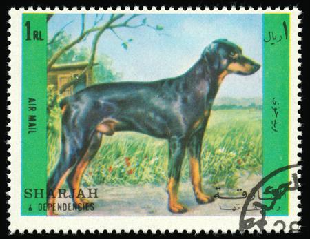 dependencies: SHARJAH AND DEPENDENCIES, UAE - CIRCA 1972: a stamp printed in Sharjah shows dog