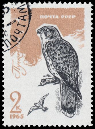 USSR - CIRCA 1965: a stamp printed in the USSR shows common kestrel