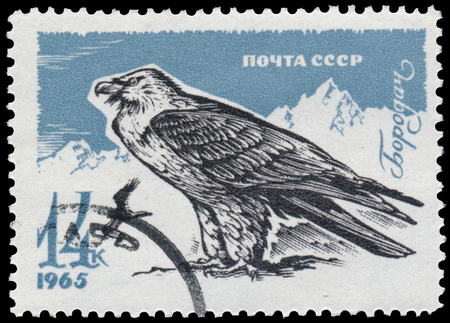 the ussr: USSR - CIRCA 1965: a stamp printed in the USSR shows bearded vulture