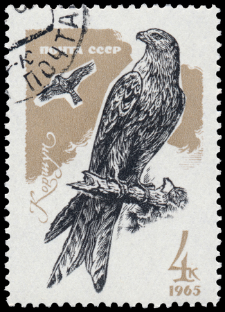 philatelic: USSR - CIRCA 1965: a stamp printed in the USSR shows red kite Editorial