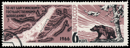 USSR - CIRCA 1966: a stamp printed in USSR shows bear and Lake Baikal