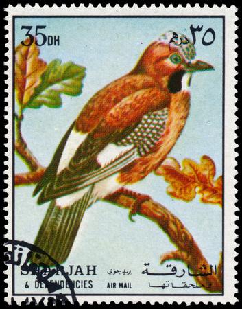 BUDAPEST, HUNGARY - 02 NOVEMBER 2015: a stamp printed in Sharjah shows Eurasian jay, circa 1972