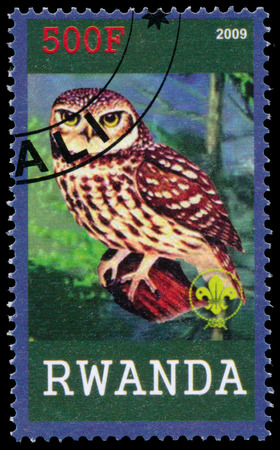 BUDAPEST, HUNGARY - 01 march 2016: a stamp printed by Rwanda, shows Owl, circa 2009