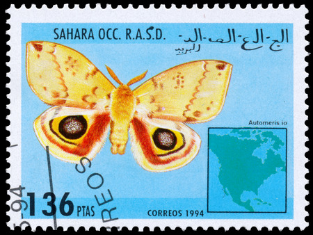 philatelic: BUDAPEST, HUNGARY - 01 march 2016:  a stamp printed in Sahara OCC. R.A.S.D shows butterfly, circa 1994 Editorial