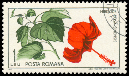 BUDAPEST, HUNGARY - 29 february 2016: a stamp printed Hibiscus rosa sinensis Shows in Romania, circa 1965 Sajtókép