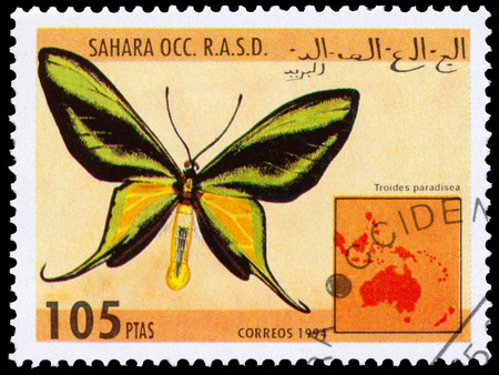 occ: BUDAPEST, HUNGARY - 01 march 2016:  a stamp printed in Sahara OCC. R.A.S.D shows butterfly, circa 1994 Editorial