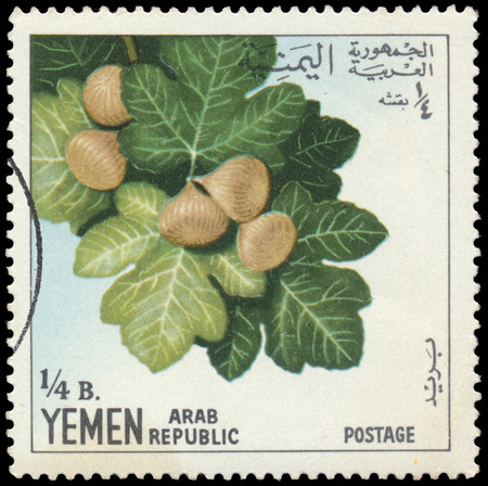 timbre: BUDAPEST, HUNGARY - 29 february 2016:  a stamp printed  in the Yemen shows figs, circa 1967