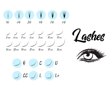 Eyelash Extension Guide. Different types of false eyelashes. Infographic vector illustration, Template for makeup and cosmetic procedures, Training poster, Certificate for the school masters of the eyebrows and eyelashes