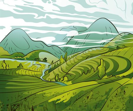 Vector rice or tea plantation on a cascading field on a mountain in China