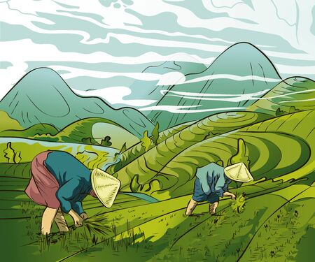 Illustration of farmers planting rice in the fields