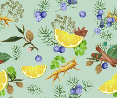Plant Ingredients What gin, Angelica Root, Almonds, Juniper Berries, Coriander Seeds, Lemon ZEST, Cinnamon, Liquorice, Vintage Background with Aromatic Plants for Aromatic Industry. Herbs and spices illustration.