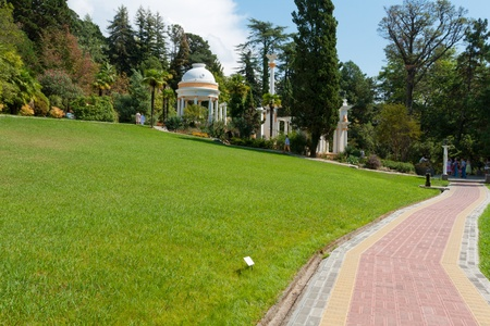 Glade with the track in the park arboretum, Russia, Sochi Stock Photo - 18431754
