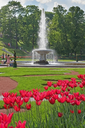 The fountains of Peterhof are one of Russias most famous tourist attractions