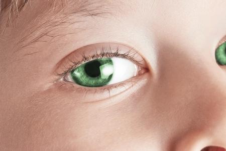 eye green: Ojo hermoso verde disparo macro, macro