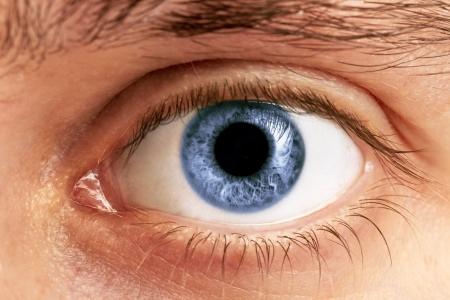 globo ocular: Primer plano de un hombre de ojos, macro